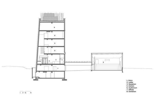 Центр Кнута Гамсуна. Разрез с аудиторией © Steven Holl Architects