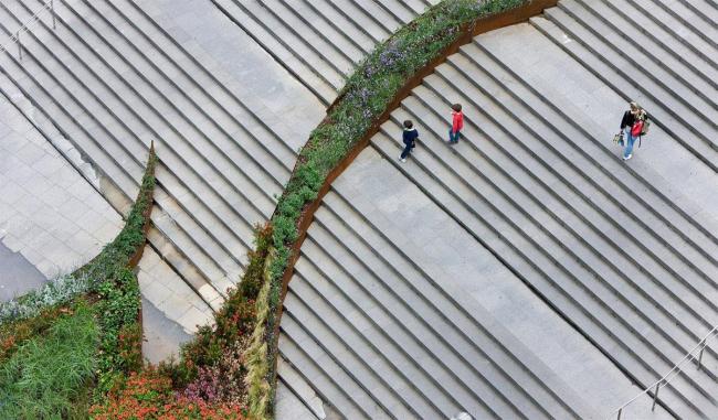Сад на лестнице. Фото © Iwan Baan