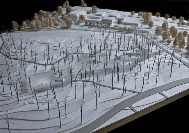 Проект «Лесной скиммер» (имеется в виду машина/корабль для сбора слоя какого-либо вещества с поверхности воды)