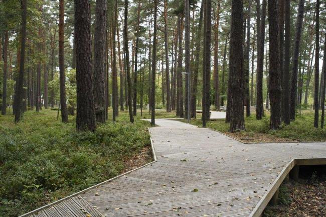 Посетительский центр лесопарка Дзинтари. Фото © Ansis Starks