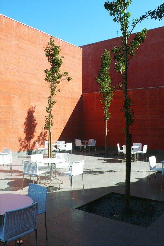 Дом историй - Музей Паулы Рего