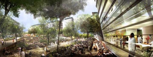 Генплан комплекса Campus Biometropolis