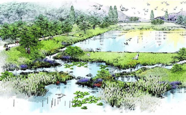 Вид территории Национального экологического института © Samoo Architects & Engineers, Grimshaw Architects