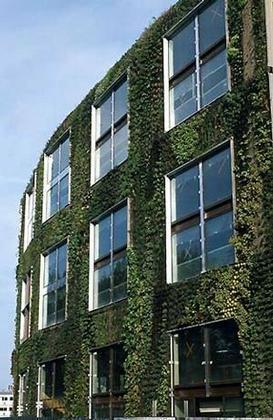 Музей на набережной Бранли. «Вертикальный сад»
