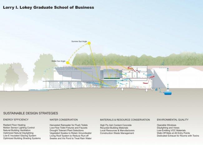 Школа бизнеса Лоуки Миллс-Колледжа. Разрез © Bohlin Cywinski Jackson