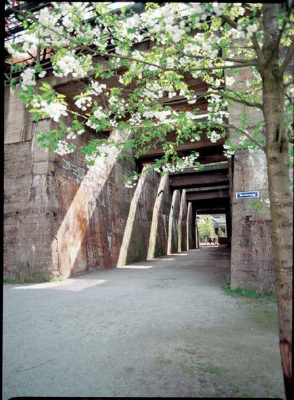 Петер Лац. Пейзажный парк «Дуйсбург – Север»