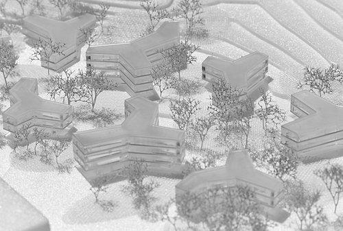 Проект «Synapsis Colony» Лапо Руффи и Антонио Моначи