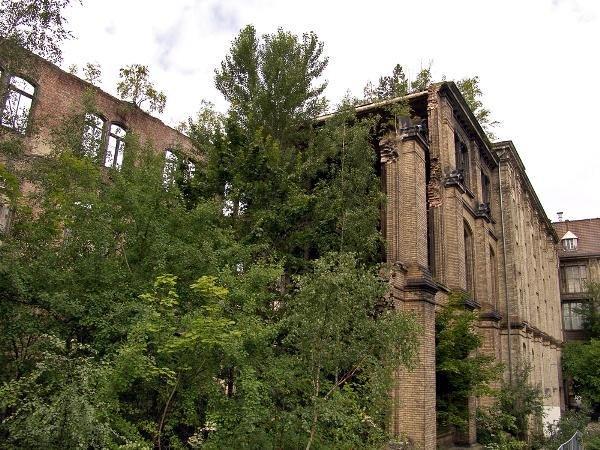Берлинский естественнонаучный музей - восточное крыло до начала реконструкции