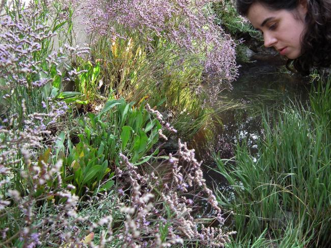 Цветов, кстати сказать, на биеннале предостаточно (не знаю, может быть теперь, под конец, часть отцвела, но что-то наверняка осталось). Можно подумать, что за самую политкорректную из совреемнных архитектурных тем, за экологию, теперь отвечают напрямую растения, как в срубленном виде (досок), так и в самом натуральном. Греки, например, соорудили внутри своего павильона (опять же деревянную) конструкцию, напоминающую слегка изогнутый дом-корабль на ножках: