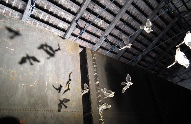 Внутри китайского зала главным аттракционом были подвешенные к потолку прозрачные птицы. Забавно, что похожая игра светотени, что и у китайцев, наблюдалась и среди скульптурных заготовок Тойо Ито: