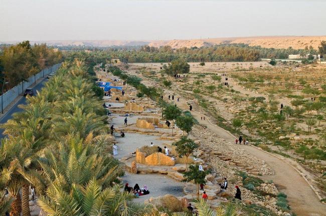 Проект регенерации заболоченной долины Вади-Ханифа в окрестностях Эр-Рияда бюро «Moriyama & Teshima Planners» и «Buro Happold»
