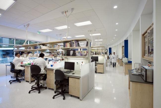 Центр регенеративной медицины Калифорнийского университета в Сан-Франциско. © Bruce Damonte