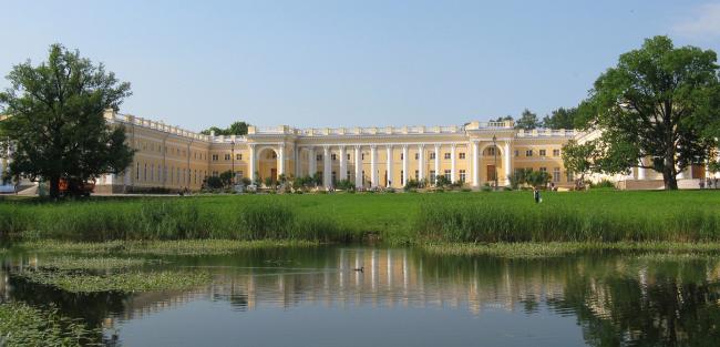 Проект реконструкции Александровского дворца. Общий вид
