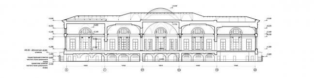 Проект реконструкции Александровского дворца. Продольный разрез