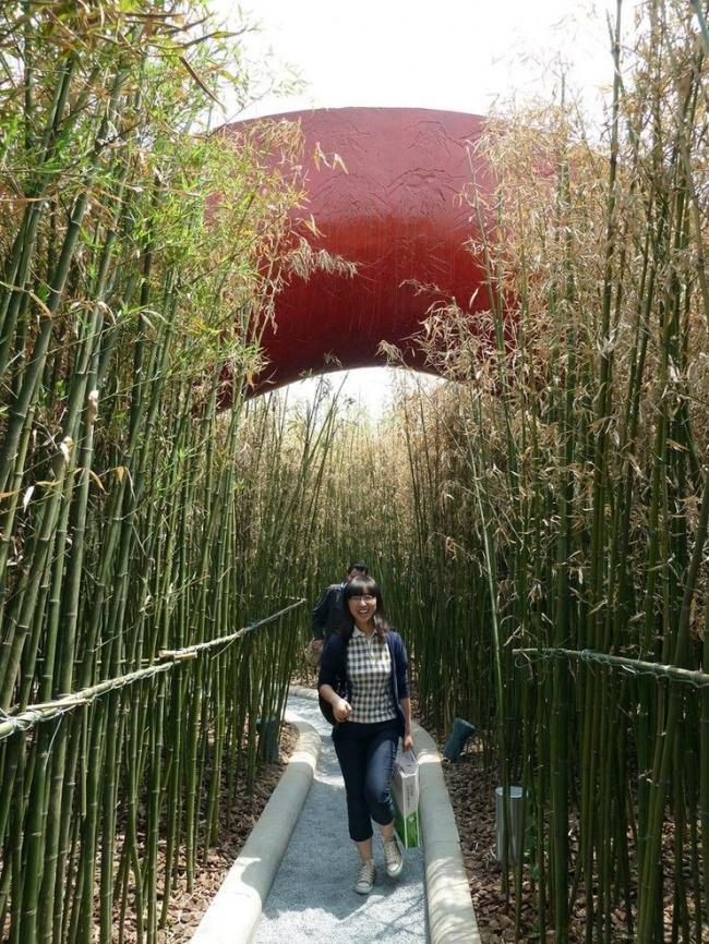 «Сад 10 000 мостов» на Международной садоводческой выставке в Сиани © West 8