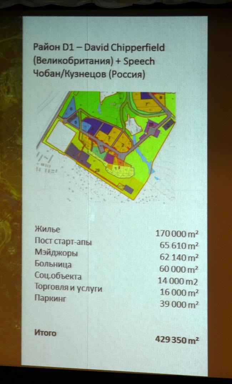 Проект района D 1 («Южный»)