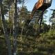 Смотровая платформа «Лесная лестница» в Стокке,