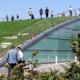 Проектирование, монтаж и обслуживание эксплуатируемых крыш и кровельного озеленения