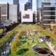 Городские леса: план Мельбурна по озеленению города