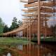 Лес. Ландшафтно-архитектурная концепция парка «Тучков буян», Санкт-Петербург
